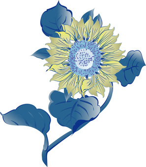 Sunflower Sunflower