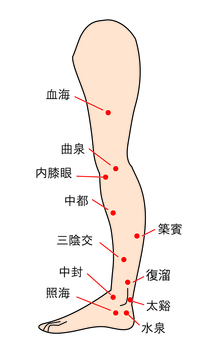 Points 3-Inside the feet