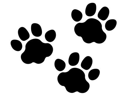 강아지의 육구