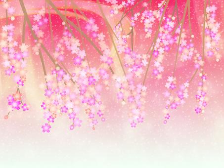 Cherry blossom background 10