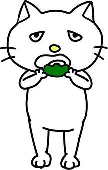 吃Kashiwa蛋糕的貓