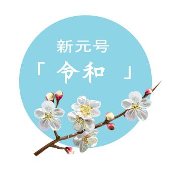 Shingengo Deiwa and Plum Flower 2