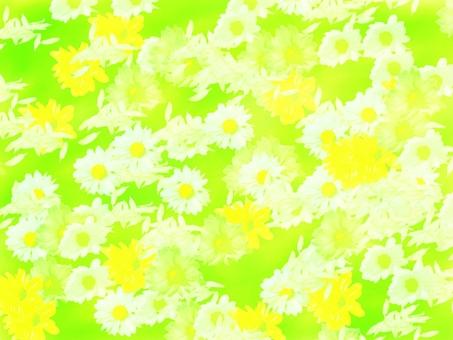 Texture background material Flower fluorescent green