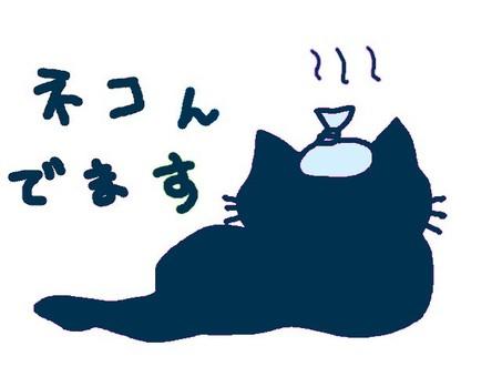 I am sleeping with a blue head.