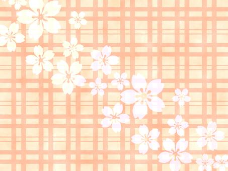 Cherry blossom orange