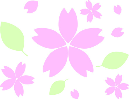 Sakura 012