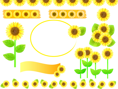 Sunflower set 3