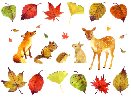 Fall animals illustration