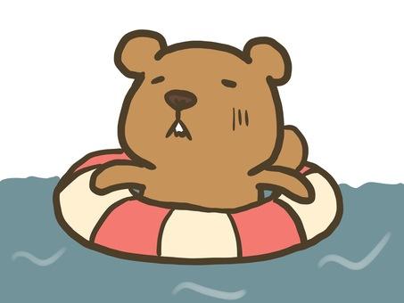 요코시마 다람쥐 (여기 어디에 ...?)