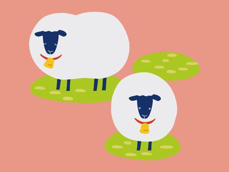 Fashionable sheep