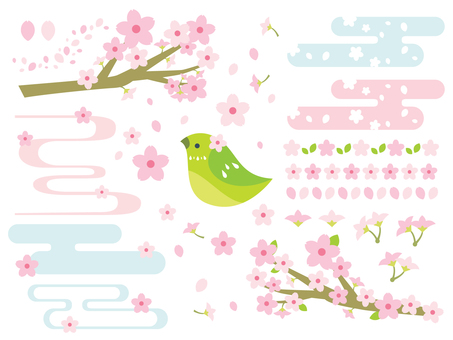 Cherry Illustration Collection