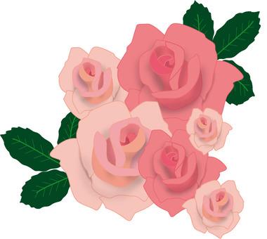 Rose frame 5 pink