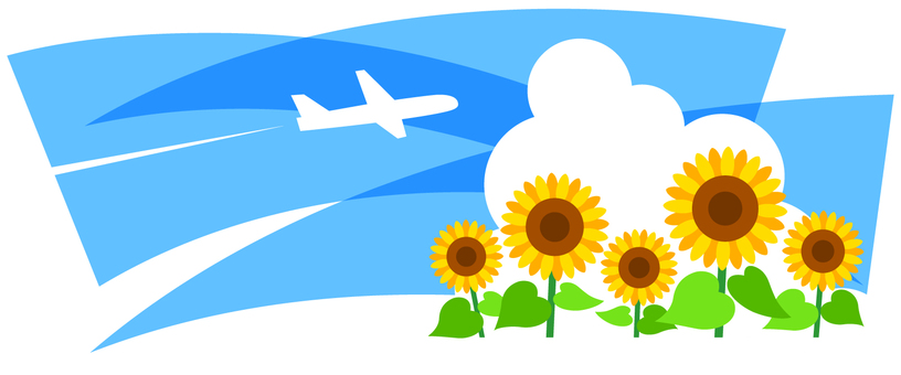 Airplane and sunflower