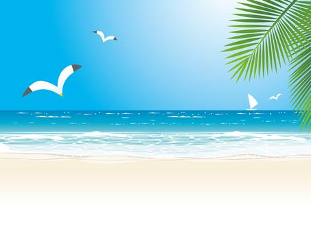 Midsummer beach and horizontal line