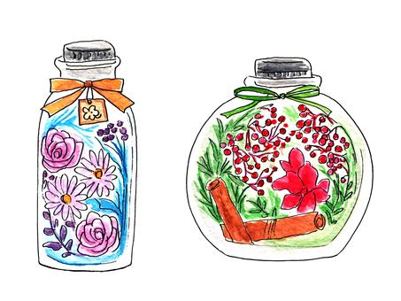 식물 표본 상자 (수채화)