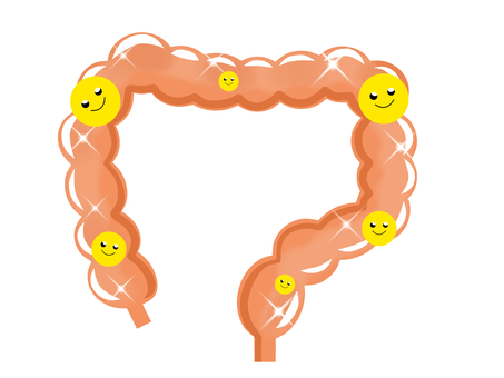 健康的大腸2