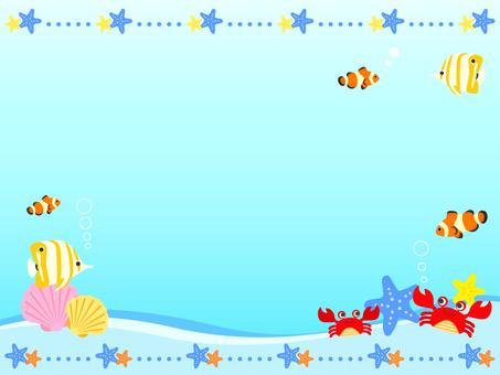 Tropical fish frame