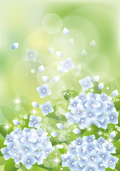 Green & hydrangea 27