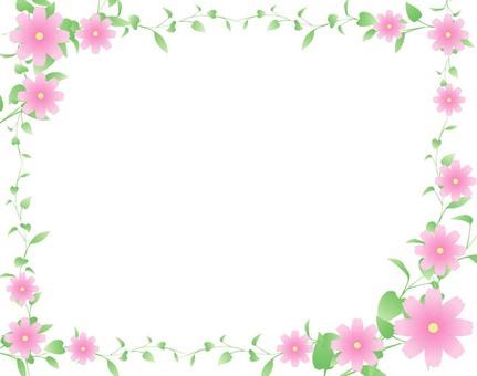 Flower & Reef Frame 2