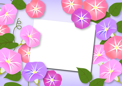 Morning Glory Summer Illustration Frame