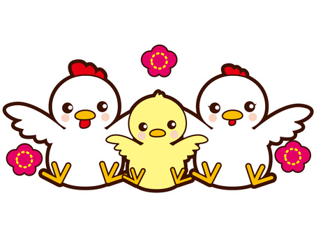 Chicken 3 people family