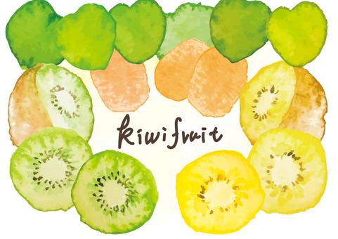 Watercolor style kiwi fruit