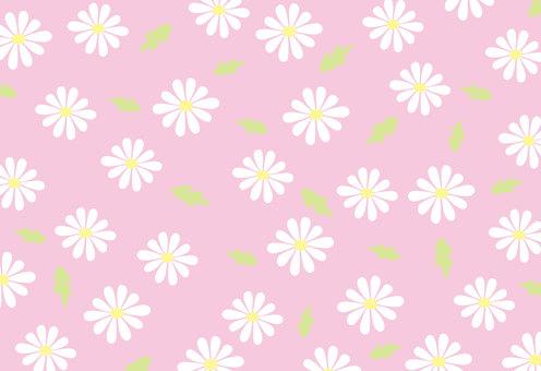 Daisy pattern - pink