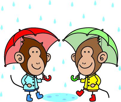 Ozas of a rainy day