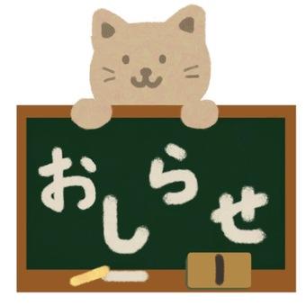 Notice cat