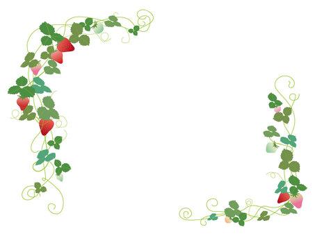 딸기 프레임