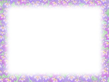 Iris frame 05