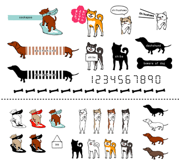 Dog assortment