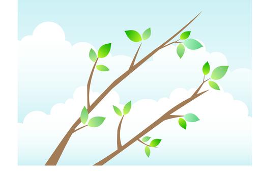 Tree branch 1