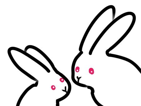 부모와 자식의 토끼