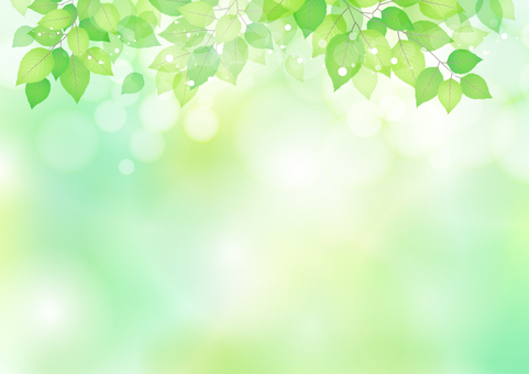 Fresh green material 198