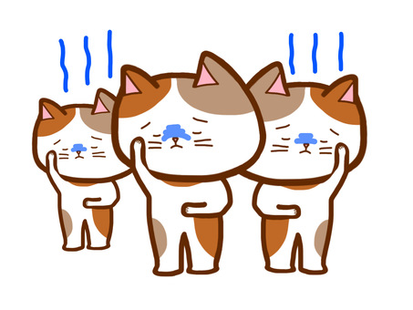 Sick cat group