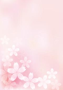 벚꽃의 꽃 18