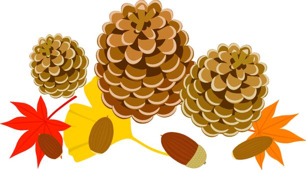 Autumn tree nuts