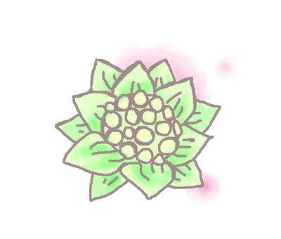 Fukinoheno