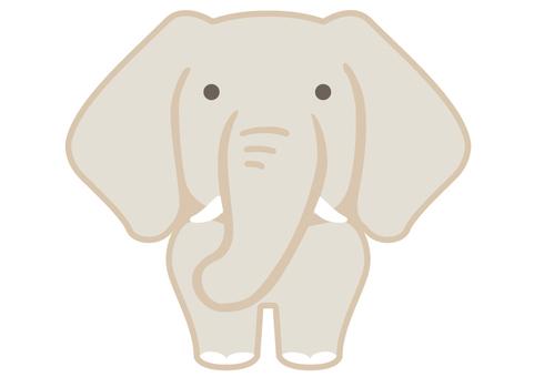 大象(前)