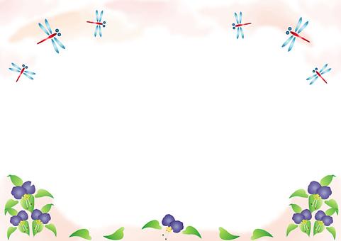 Dragonfly frame Ⅱ