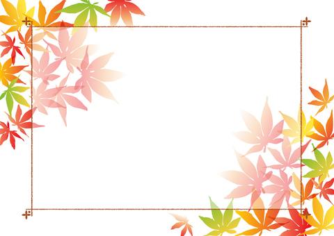 Autumn leaves _ frame