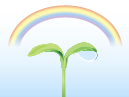 Rainbow and Futaba