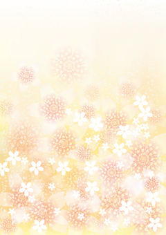 벚꽃의 꽃 168