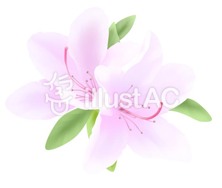 【フリーイラスト素材】お花・ツツジの花1