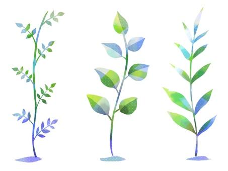 시원한 식물의 일러스트 소재