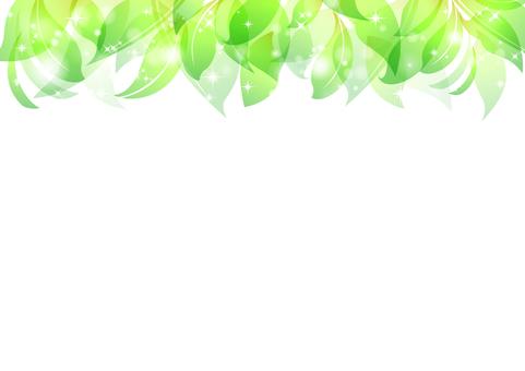 Fresh green material 1