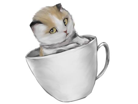 Mike cat in Coffee cup