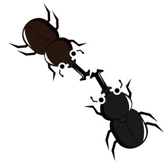 Beetle fight