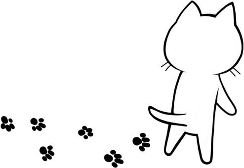 Footprint cat